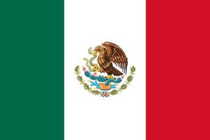 Foto Pasaporte Mexicano